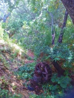 Waterwheel at Sanctuary
