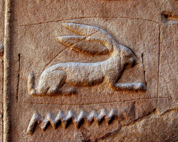 Ancient Egyptian Hare