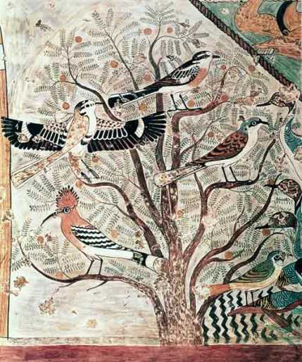 birds-in-an-acacia-tree-wall-painting-from-tomb-of-khnumhotep-iii-beni-hasan-middle-kingdom